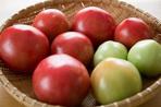 『国際有機農業映画祭』でトマト缶の裏側を描く「トマト帝国」日本初上映