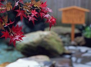 日本人が好む「秋のレジャー」は秋バテ回避に効果的?