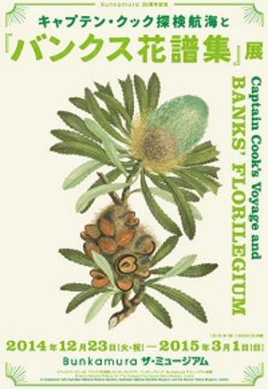 キャプテン・クックの航海で採集された美しい植物図譜を紹介する展覧会