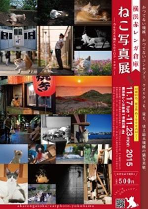 横浜赤レンガ倉庫で『ねこ写真展』 1000点以上の猫写真を紹介