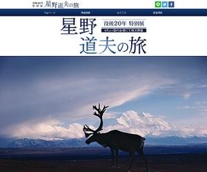 アラスカを拠点にした写真家・星野道夫 没後20年特別展
