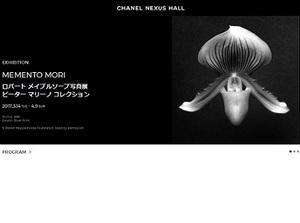 写真家・ロバート・メイプルソープの展覧会『Memento Mori』 銀座にて