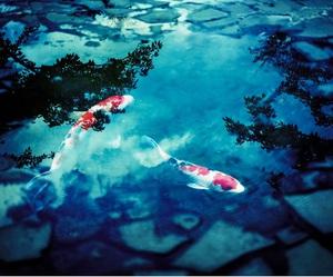 ジャッキー・チェンの伝説「魚とも話せるらしい」の真偽