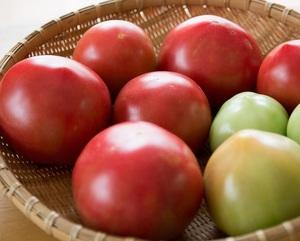 トマト缶の実態 腐ったトマトの再商品化「ブラックインク」とは