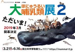 陸と海の哺乳類が大行進 巧みな生存戦略に迫る『大哺乳類展2』