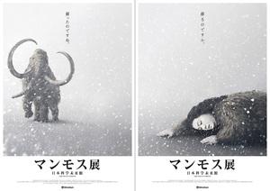 世界初公開の冷凍マンモス標本が来日 日本科学未来館『マンモス展』