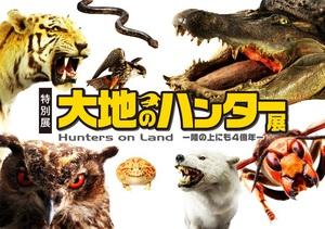 動物たちの「捕食」に注目 テクニックや進化を知る『大地のハンター展』