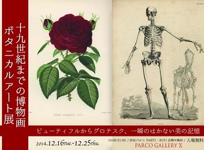 植物の細密画や禁断の解剖書を紹介する展覧会 ゴスロリブームの元祖も登場