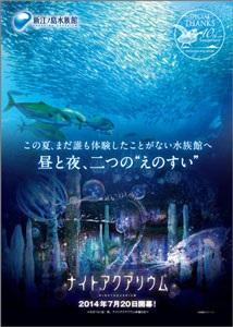 プロジェクションマッピングで夜の水族館を堪能 新江ノ島水族館にて