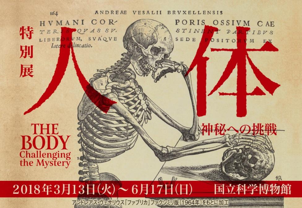最も身近で最も奥深い「人体」を知る『人体-神秘への挑戦-』展